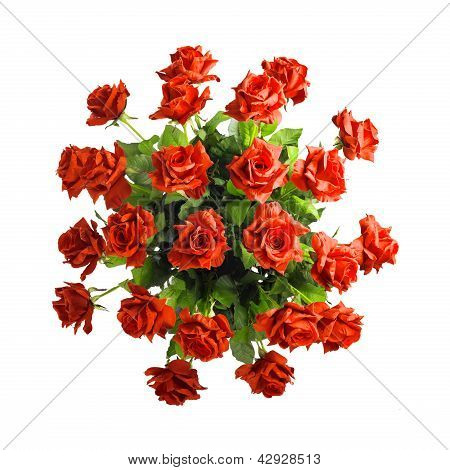 bouquet of red roses isolated on white background