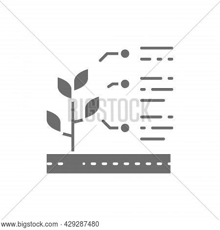 Vector Plant Properties, Seed Characteristics Grey Icon.
