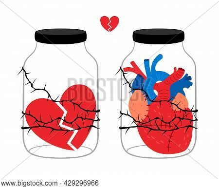 Heart In Jar Concept. Romantic Love Happiness And Pain Glass Pot Gift And Transplant Organ Donation