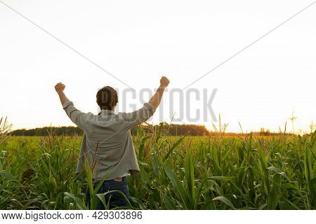 Farmer In A Corn Field Raises His Hands Up, His Head Raised To The Sky, Enjoying His Success