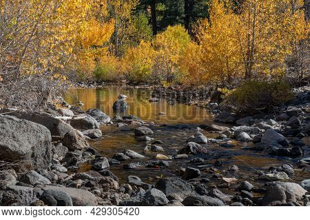 Reflection Of The Fall Collors On A Creek In California Near Highway 4 In The Eastern Sierras Side,