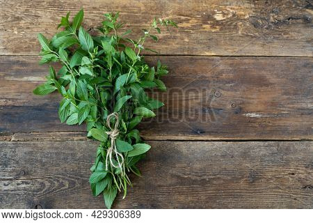 A Bunch Of Fresh Mint On A Wooden Background. Collect And Prepare To Dry. Copy Space. Scissors And A