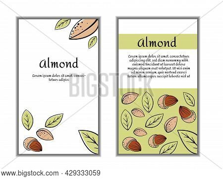 Set Of Cards Banners, Tags, Package With Hand Draw Nuts - Almond, Pistachio. Modern Vector Illustrat