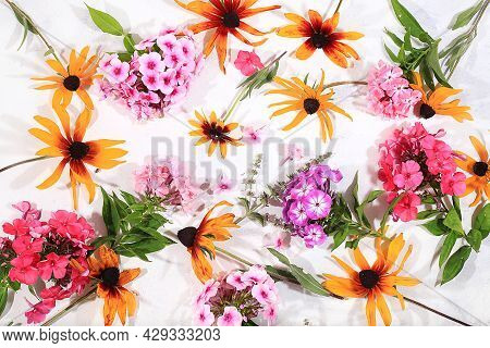 Colorful Flowers Of Phlox And Rudbeckia Abstract Flower Arrangement Autumn Background. Greeting Card