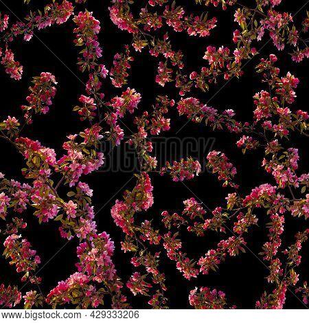 Apple Blossom Branch Of Flowers Cherry. Traditional Ornate Spring Flowers Sakura Pattern Seamless. W