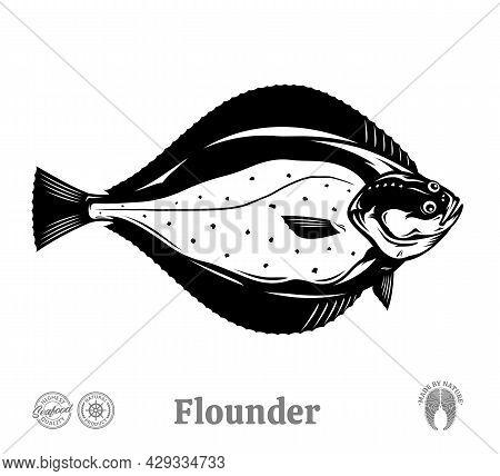 Vector Flounder Fish Illustration