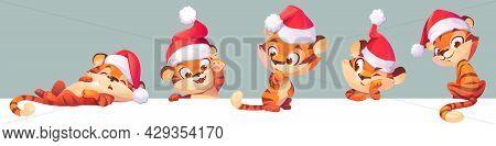 New Year Tiger In Santa Hat, 2022 And 2034 Chinese Zodiac Symbol. Wild Cute Kitten, Baby Predator An