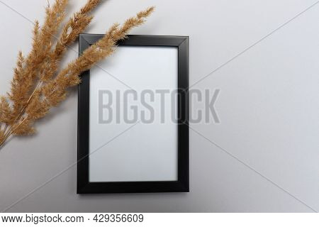 Flat Lay Still Life Composition With Black Photo Frame And Dried Pampas Plant On White Background. T