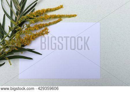 Flat Lay Composition With Empty Blank Mockup Greeting Card, Leaves And Flowers On White Background.
