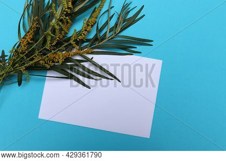 Flat Lay Composition With White Blank Mockup Greeting Card, Leaves And Flowers On Blue Background. T