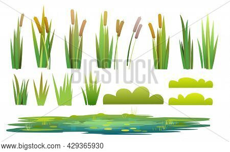 Set Of Plants And A Objects. Grass, Shrubs, Reeds And Cattails. Small Swamp, Pond, Lake Or Puddle. I