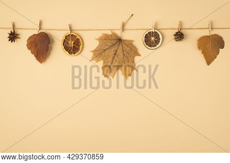 Top View Photo Of Brown Autumn Leaves Anise Cone And Dried Citrus Slices Attached To Twine Rope With