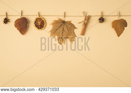 Top View Photo Of Brown Autumn Leaves Anise Cone Dried Lemon Slice And Cinnamon Stick Attached To Tw