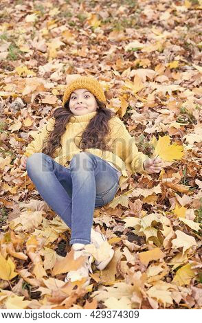 Like A Fallen Leaf On Autumn Day. Excited Child Lying In Autumn Leaves. Little Girl In Casual Fashio