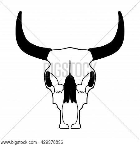 Vector Bull Skull. Bull Illustration. Skull Tattoo Sketch. Cattle Skull. Bull Anatomy, Bones.