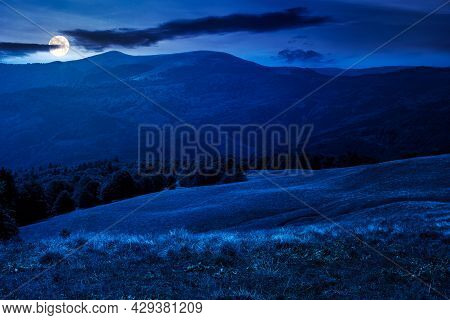 Beech Trees On The Hill At Night. Empty Alpine Meadow With Dry Grass In Full Moon Light. Countryside