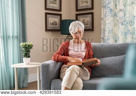 Old beautiful woman reading a book while sitting on couch at home. Elder lady relaxing at home while reading a book on sofa. Senior grandmother wearing eyeglasses for read a novel alone.