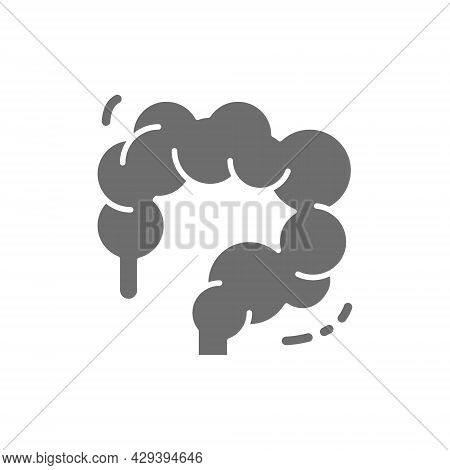 Intestinal Tract, Colon, Intestines, Human Organ Grey Icon.