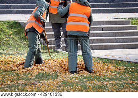Janitors Sweeping The Fallen Leaves On Autumn Street. Cleaning Leaves In The City Park, Street Sweep