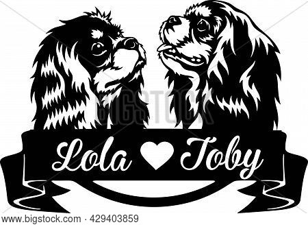 Cavalier King Charles Spaniel - Peeking Dogs - Breed Face Head Isolated On White