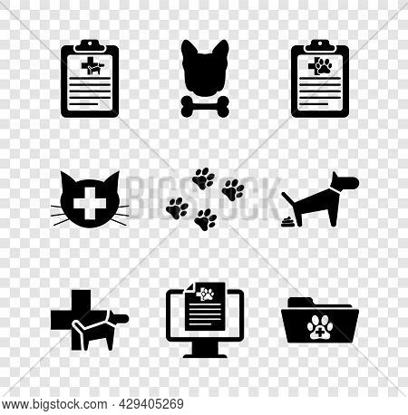 Set Clinical Record Pet, Dog And Bone, , Veterinary Clinic, Monitor And Medical Veterinary Folder Ic