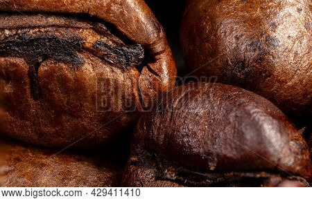 Close Up Of A Coffee Bean.\nmacro Panorama Photography Of Coffee Beans In High Resolution. Detailed