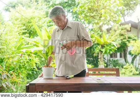 A Happy And Smiling Asian Old Elderly Man Is Planting For A Hobby After Retirement In A Home. Concep