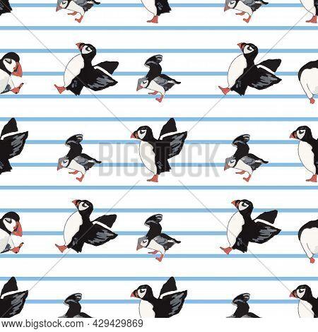 Vector White Background Ocean Seabird, Arctic Birds, Puffins. Seamless Pattern Background