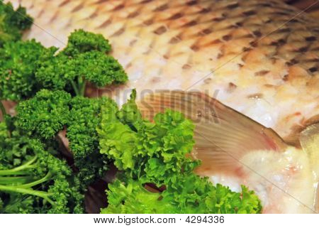 Fish In Parsley