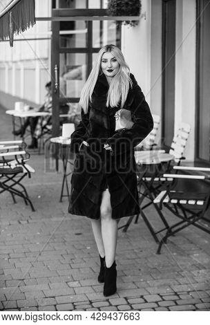 Festive Season. Elegant Woman Wear Fur Coat. Eco-friendly. The Best Luxury Clothing Material. Lady L