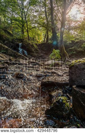 A Waterfall In The Arbre D'or In The Broceliande Forest, A French Mystical Forest Located In The Ill