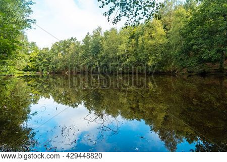A Natural Lake In The Broceliande Forest, A French Mystical Forest Located In The Ille Et Vilaine De
