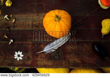 Autumn Frame Composition And Layout Made Of Colorful One Pumpkin Centered, Mushrooms Aged Old Retro
