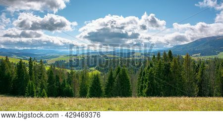 Mountain Landscape In Early Autumn. Trees And Meadows On Rolling Hill In Dappled Light. Sunny Nature
