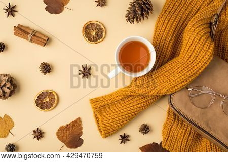 Top View Photo Of Yellow Pullover Leather Handbag Stylish Glasses Cup Of Tea Autumn Brown Leaves Ani