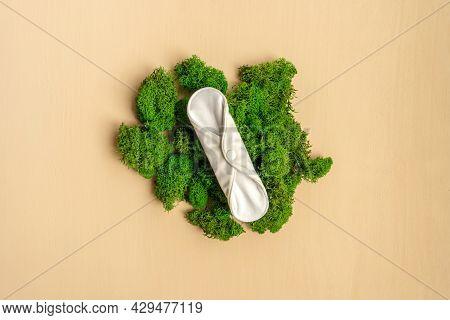Reusable Eco Natural Pad On Green Moss.