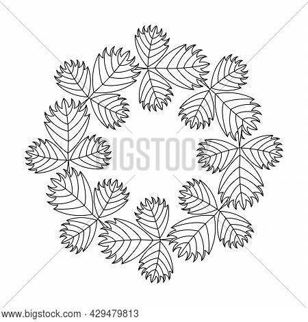 Coloring Book For Older Children And Adults. Frame With Abstract Leaves. Decorative Hand Drawn Vecto