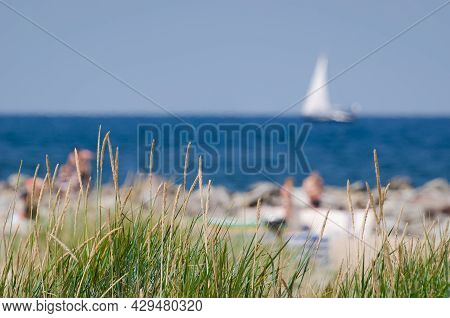 Sea Coast In Summer - Seagrass On Dune And Holidaymakers On The Beach