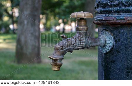 Water Well In The Park In Summer, Pumping System, Close-up And Side View Of A Beautiful Metal Bronze