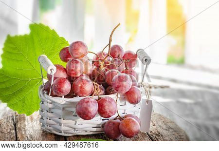 Bunch Of Ripe Red Grapes In A Small Basket On The Table In The House Under The Rays Of The Sun. Larg