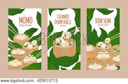Steamed Dumplings Momo And Dim Sum. Template Of Flyer, Poster, Menu Card Cover Restaurant With Diffe
