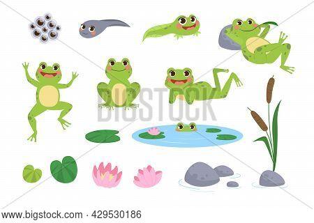 Happy Cartoon Frogs Vector Illustrations Set. Drawings Of Cute Green Amphibian Resting, Jumping, Tad