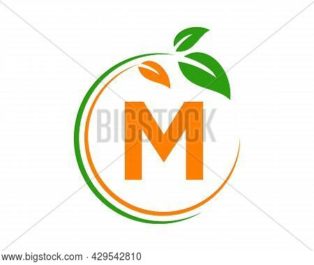 Eco Logo With M Letter Concept. M Letter Eco Healthy Natural Logo