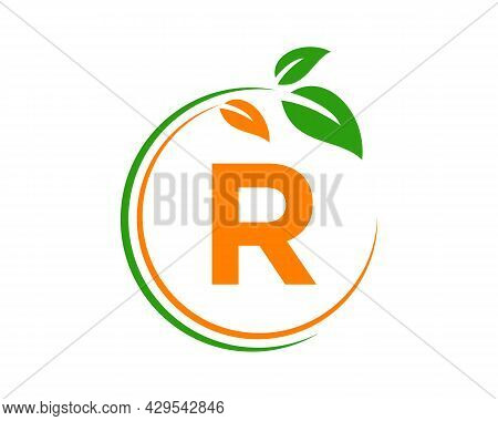 Eco Logo With R Letter Concept. R Letter Eco Healthy Natural Logo