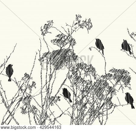 Scribble Drawing Of Silhouettes Birds Sitting On Dry Wildflowers