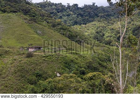 Mountain Scenery With An Old Farmhouse, Woods And Paddocks