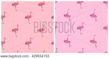 Pink Flamingo. Exotic Tropical Bird. Decoration Element. Seamless Pattern With Pink Flaming. Simple