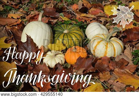 Happy Thanksgiving Hand Lettering With A Photo Background With Cute Pumpkins And Autumn Warm Color M