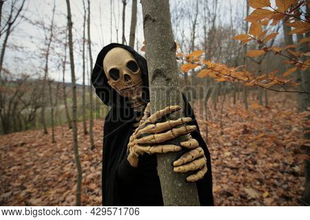 Halloween And Horror Concept. Death In The Autumn Forest.skull Halloween Costume. Autumn Traditional