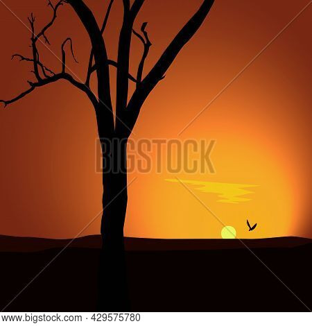 Sunsetlandscape With Sunset Silhouette Of A Tree In The Looming Darkness.